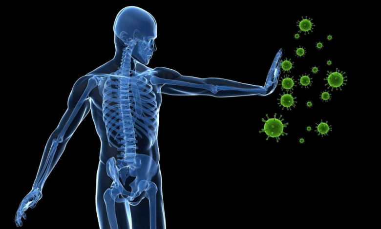 CBD AND THE BODY IMMUNE SYSTEM